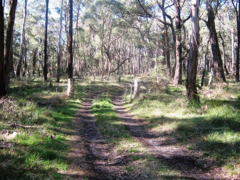 434 Bourke & Wills Track, Lancefield, Vic 3435