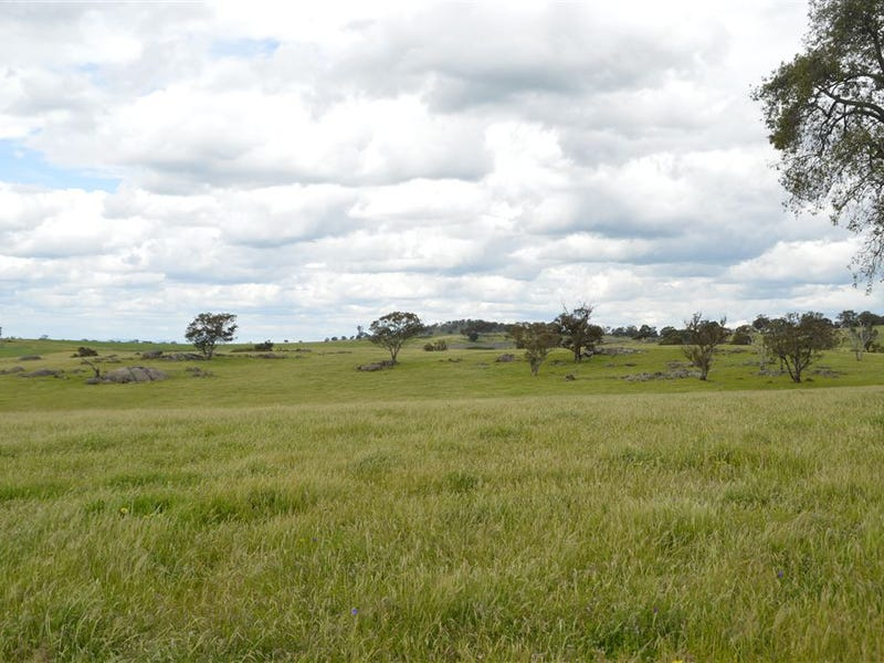 Twosey 96 Whitakers Lane, Marrar, NSW 2652