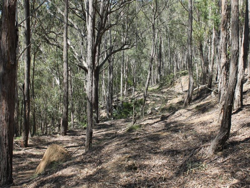 Lot 103 Araluen Road, Araluen, NSW 2622