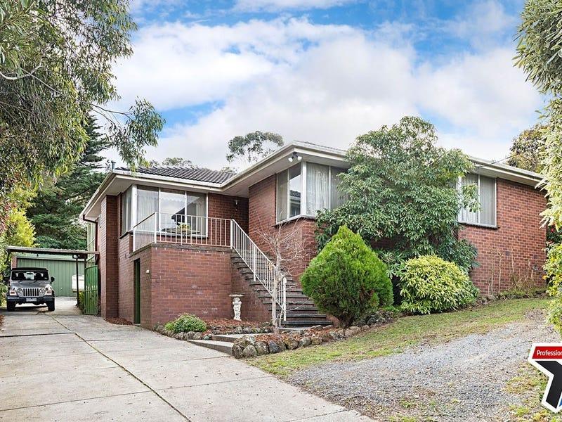 3 Williams Road, Mooroolbark, Vic 3138