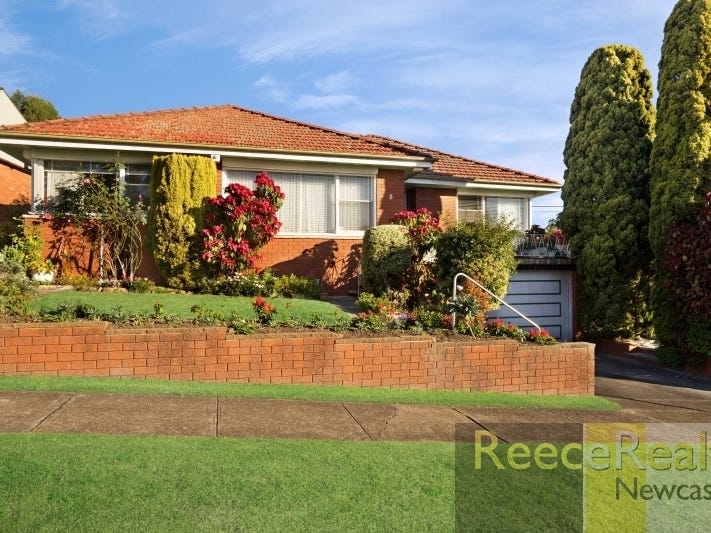 8 Hansen Place, Shortland, NSW 2307