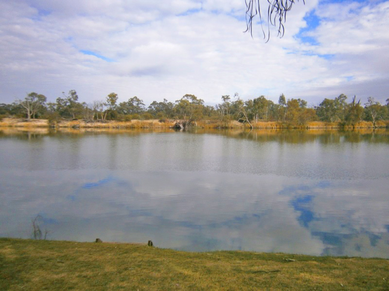 Lot 194, Scotts Creek, Morgan, SA 5320