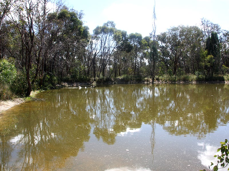 528 Ridge Road, Cooks Gap, NSW 2850