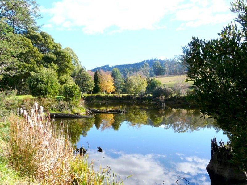 27235 Tasman Highway, Goshen, Tas 7216