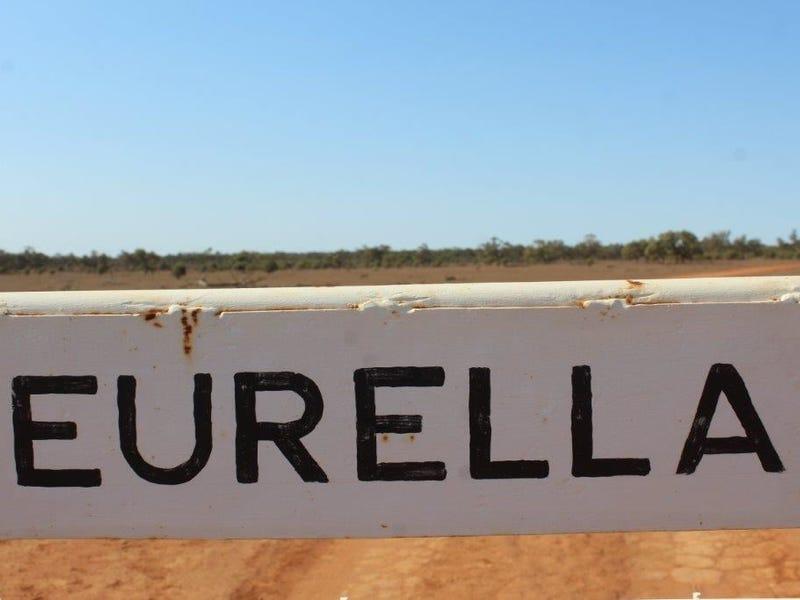 . Eurella, Ivanhoe, NSW 2878