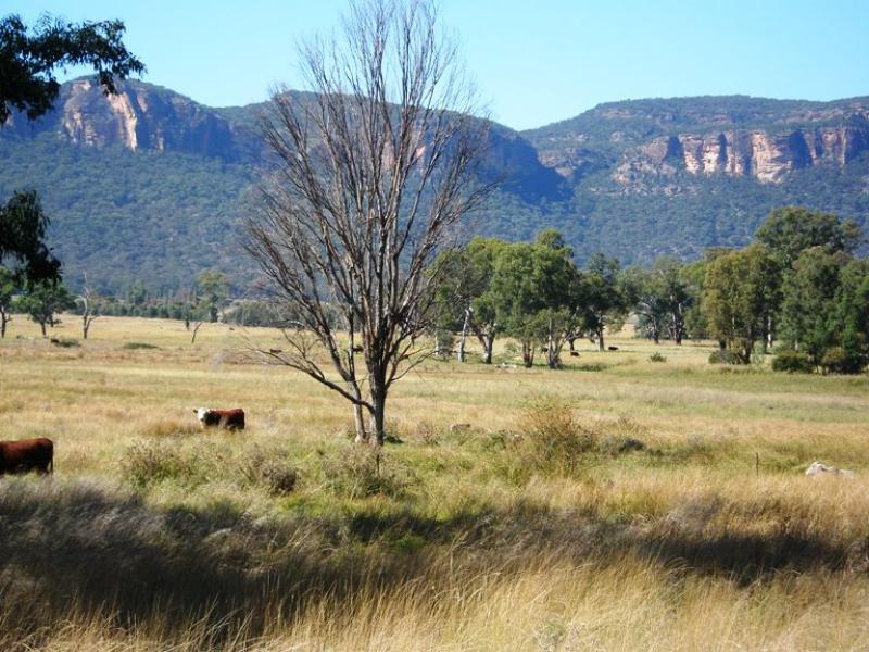 """""""Wattys"""" Upper Nile Road, Glen Alice, NSW 2849"""