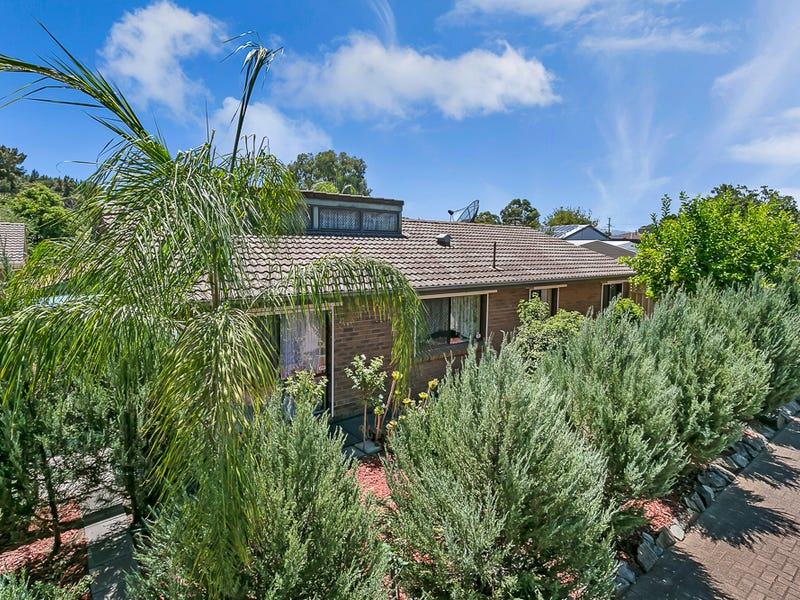 Residence 10 3 Sycamore Terrace, Campbelltown, SA 5074