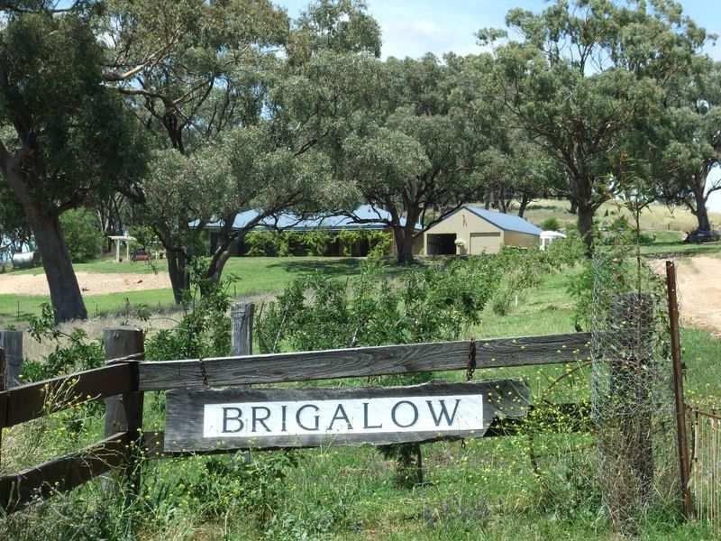 Brigalow Kangaroobie Lane, Orange, NSW 2800