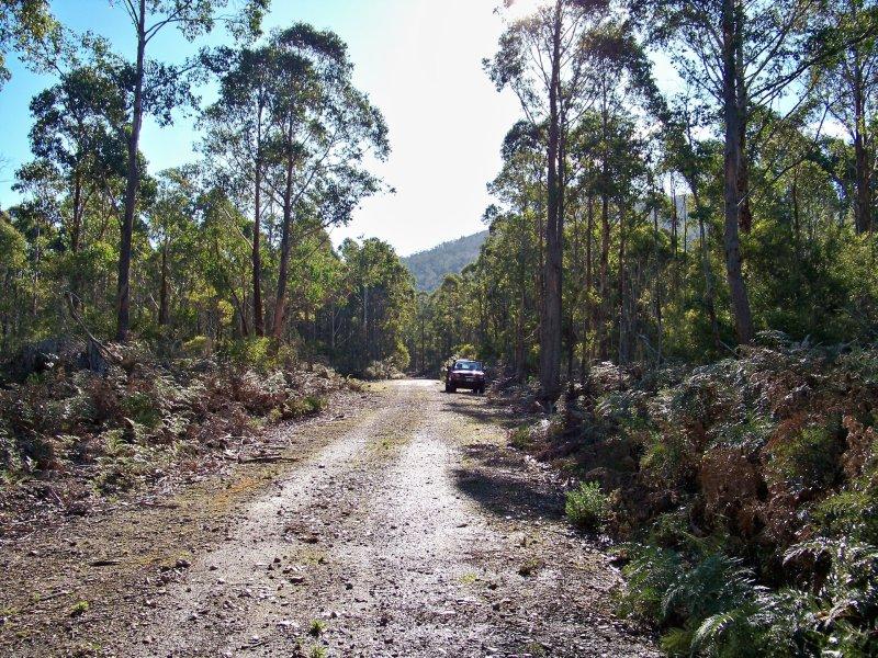Lot 1 Calders Gully Road, Mangana, Tas 7214