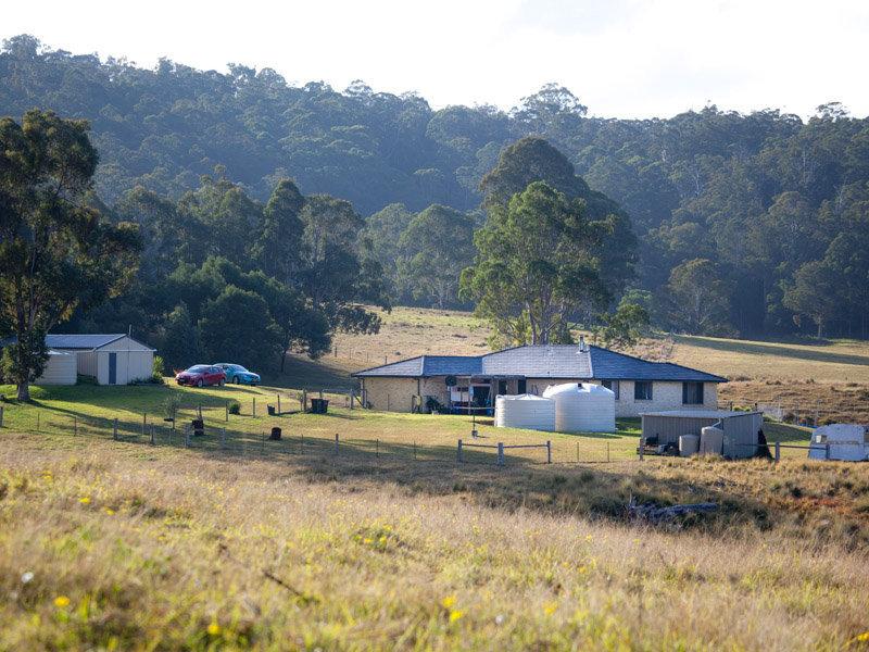 42 Narira Park Lane, Cobargo, NSW 2550