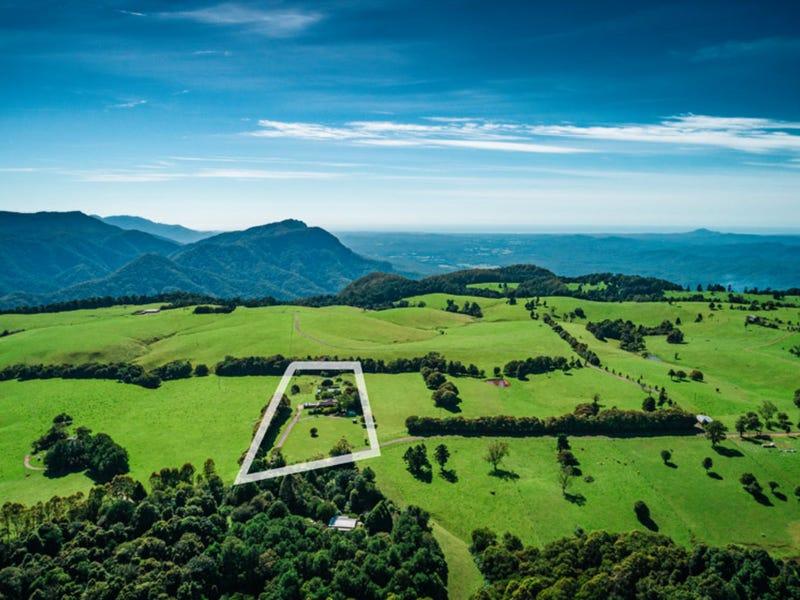 121 Mountain Top Road, Dorrigo, NSW 2453