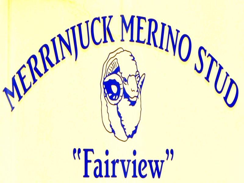 "1 ""Fairview"" Orange Road, Parkes, NSW 2870"