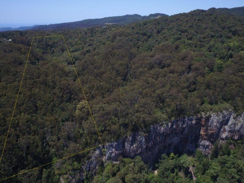 132 Repeater Station Road, Springbrook, Qld 4213