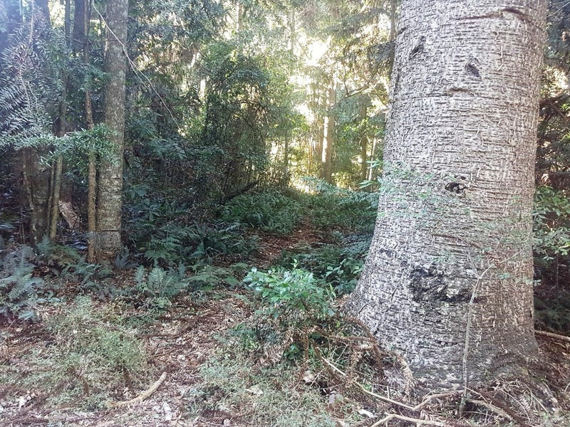 Lot 126, Grimley Street, Bunya Mountains
