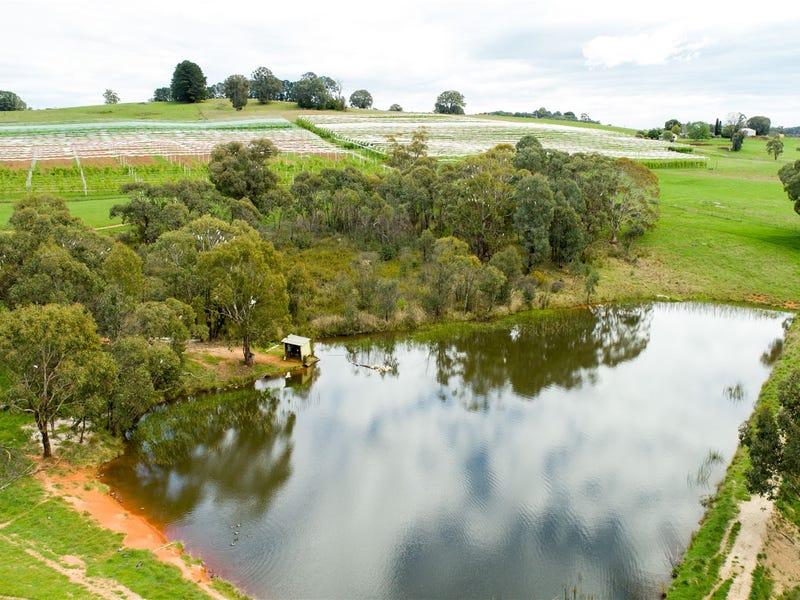 Blue Hills & Orana Willigobung South Spur Rd, Tumbarumba, NSW 2653