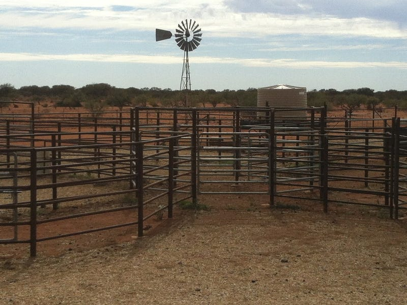 Milly Milly & Beringarra Stations, Murchison, WA 6630