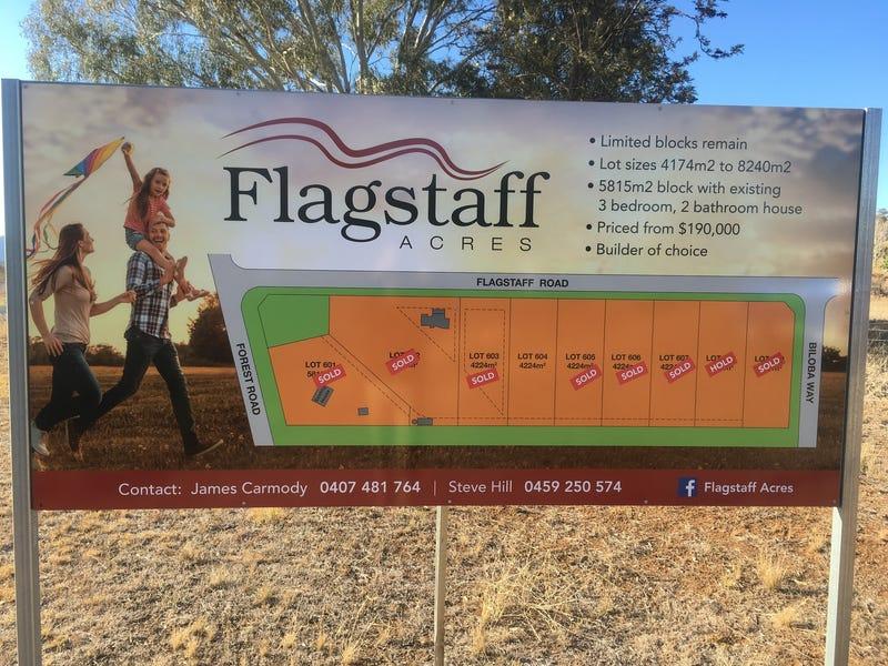LOT 604 Flagstaff Rd, Tamworth, NSW 2340