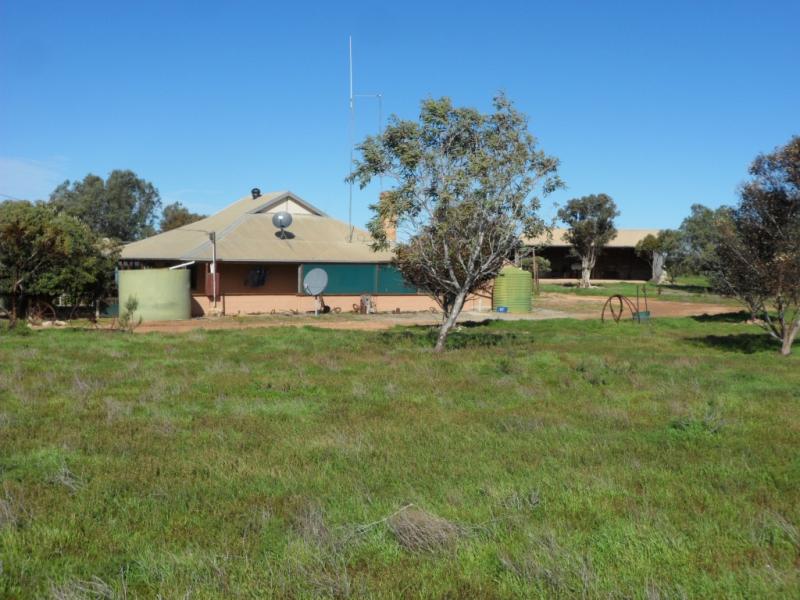lot 52 Nundroo- Fowlers Bay Road, Coorabie, SA 5690