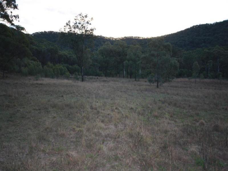 Lot 100 Wybong Road, Wybong, NSW 2333