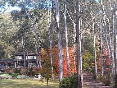 219 Sun Valley Road, Sun Valley, NSW 2777