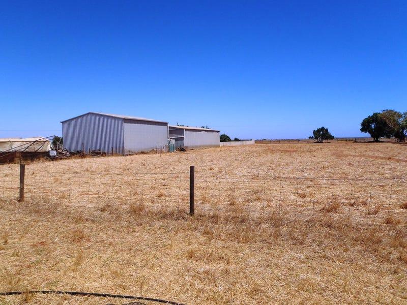 579 Geraldton Mount Magnet Road, Moonyoonooka, WA 6532
