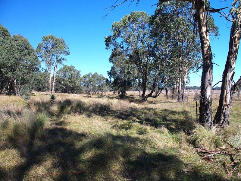 1458 Bendoc-Orbost Road, Delegate, NSW 2633