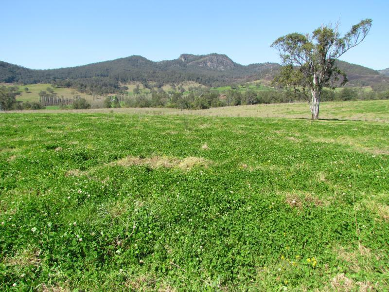 Lot 1 Barrington West Rd, Barrington, NSW 2422