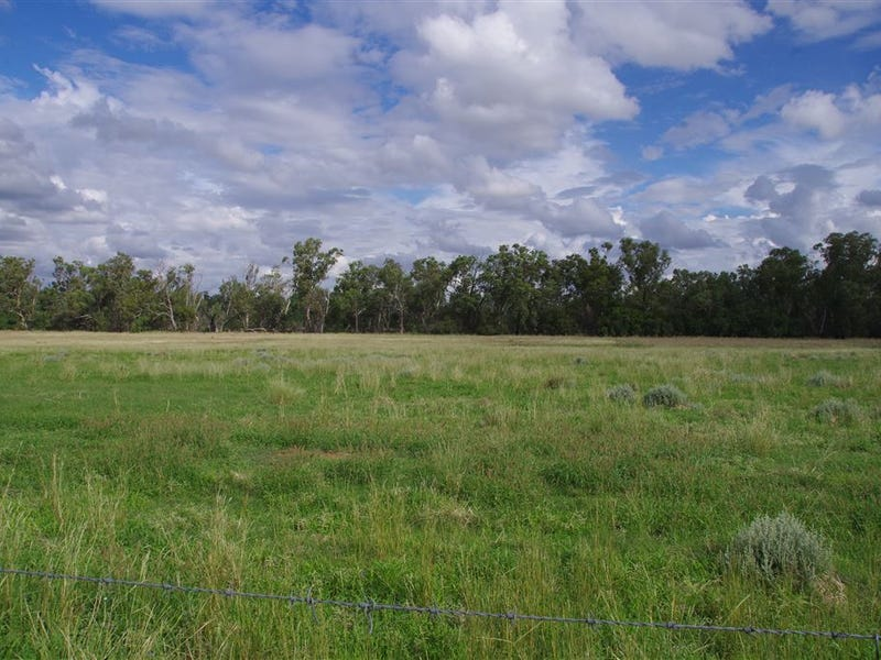 1557 Kaputar Road, Narrabri, NSW 2390