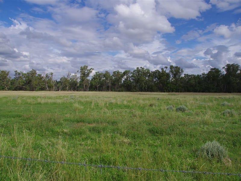 1557 Kaputar Road, Narrabri, NSW 2390