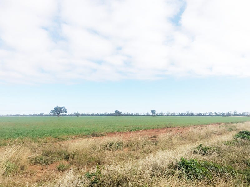 'KNC Plains', Tottenham, NSW 2873