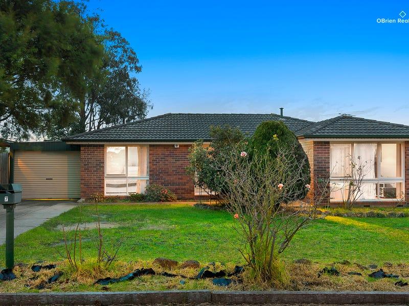 7 Mossgiel Park Drive, Endeavour Hills, Vic 3802