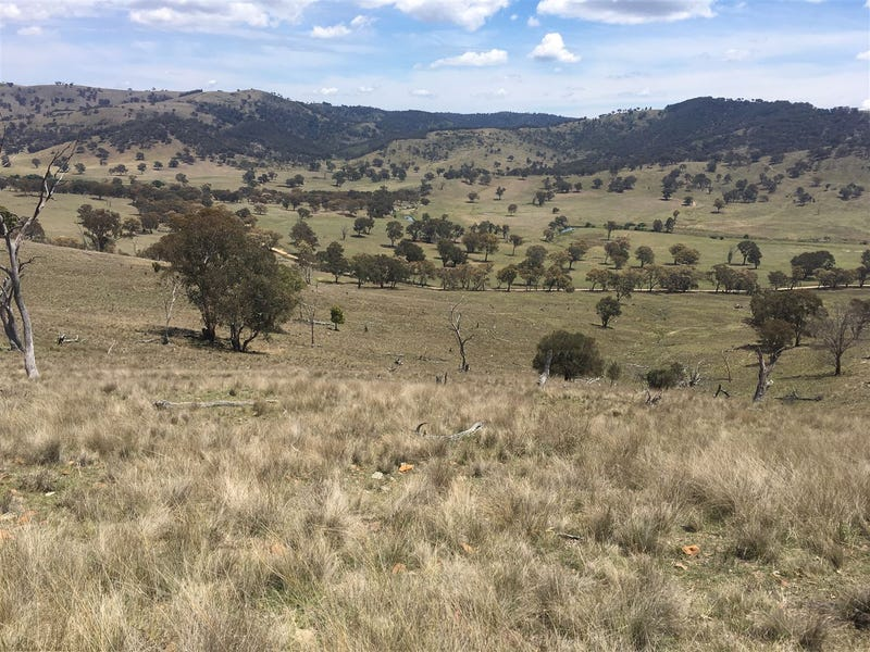 1141 Crudine Road, Rylstone, NSW 2849