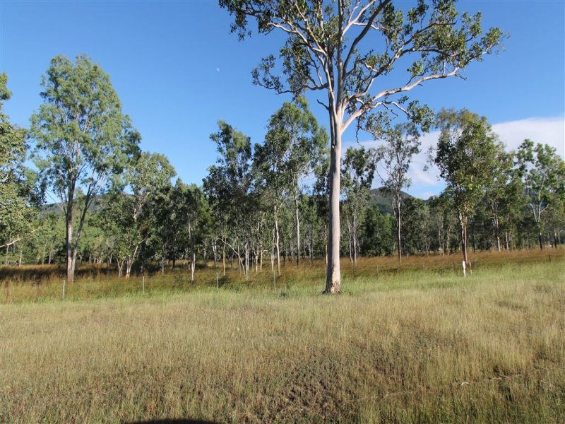 954 Woodstock Giru Road, Giru, Qld 4809