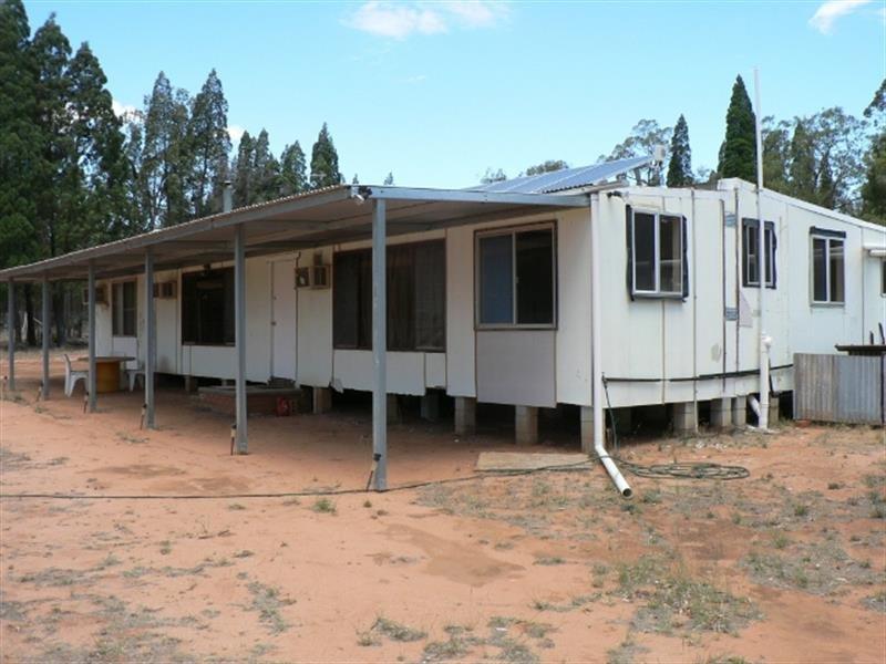 135 L  Wattle Rd, Elong Elong, NSW 2831