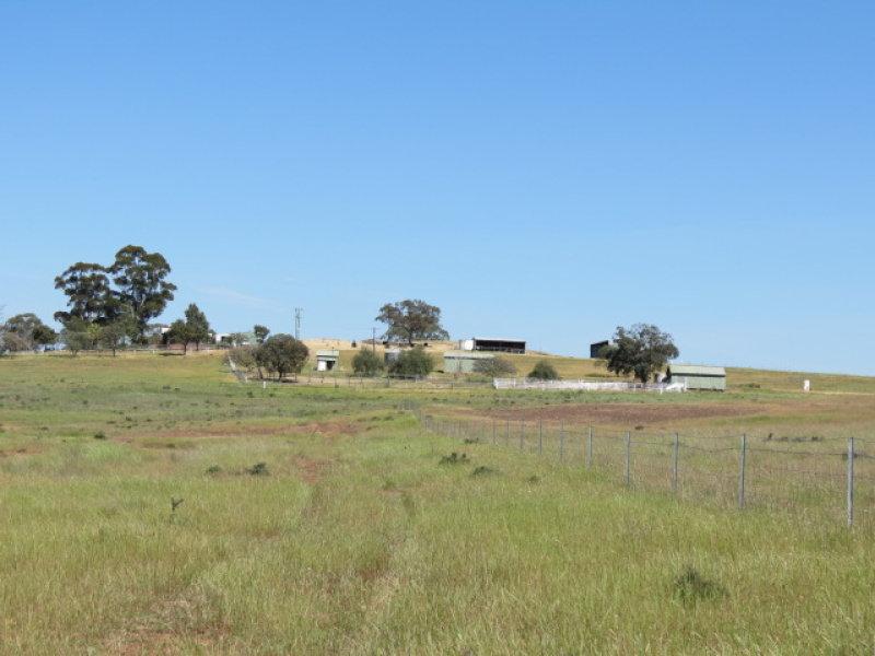 264 Heatherbrae Road, Geurie, NSW 2818