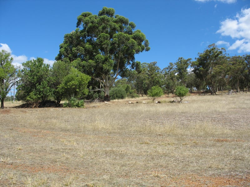Lot 202 Werribee Road, Wundowie, WA 6560