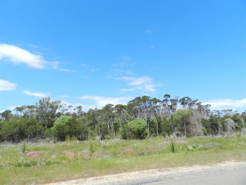 158 Hollands Landing Road, Hollands Landing, Vic 3862