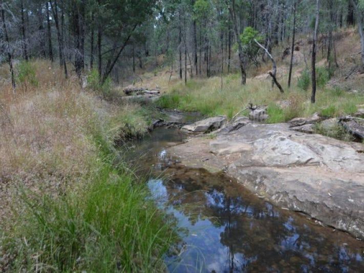 2498 Baradine Road, Coonabarabran, NSW 2357
