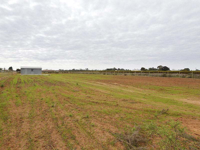 Lot 3 River Road, Dareton, NSW 2717