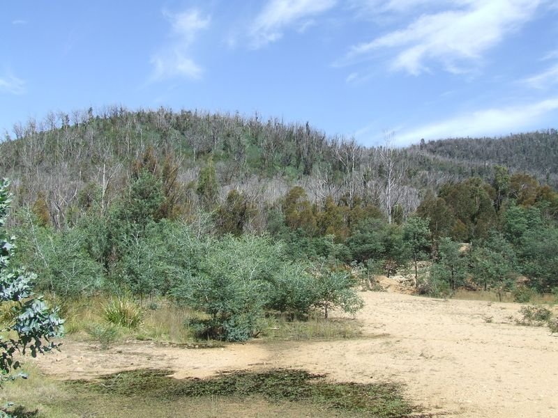 Davis Gully Road, Four Mile Creek, Tas 7215