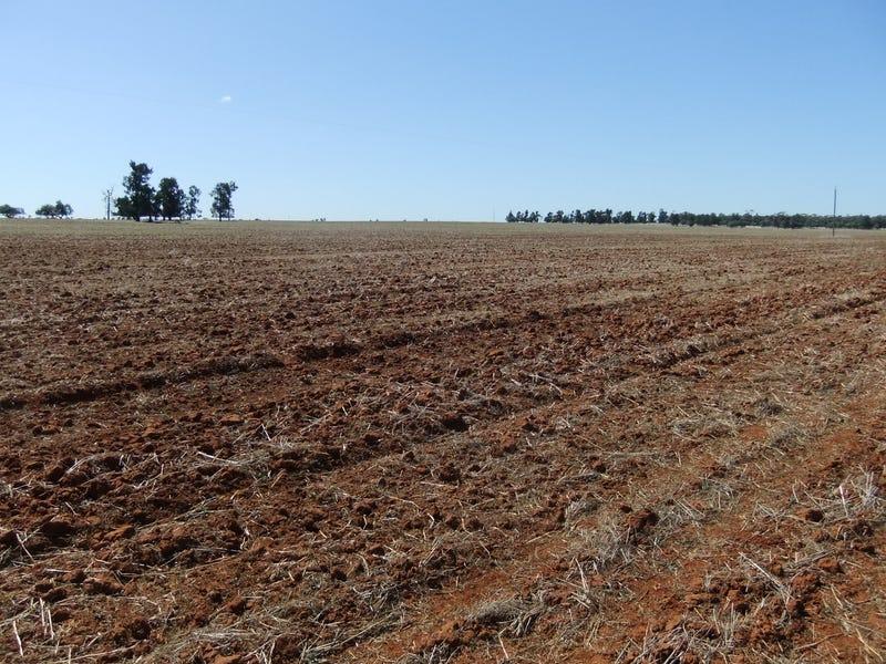 """""""Trelawn"""" Wild Horse Tank Road, Merriwagga, NSW 2652"""