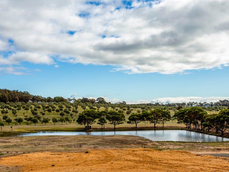 Willow Glen Road, Lower Boro, NSW 2580