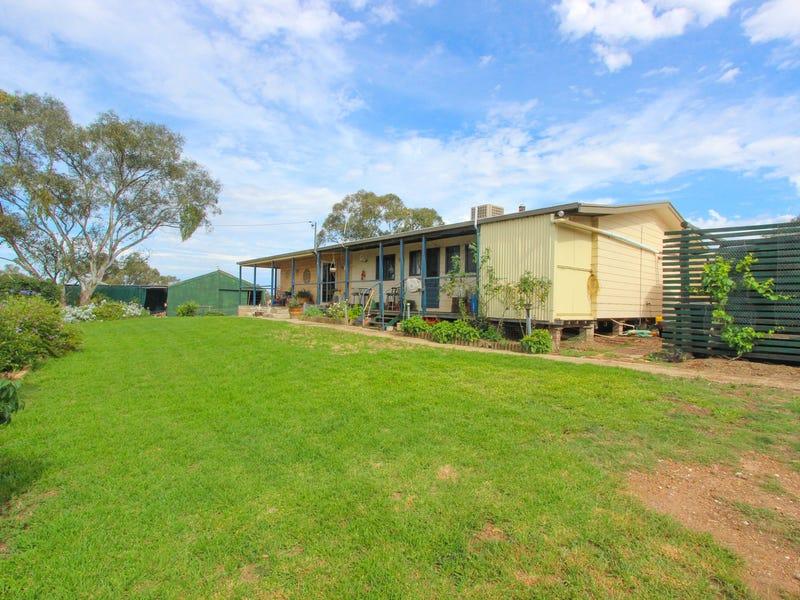 Pine Hill, Temora, NSW 2666