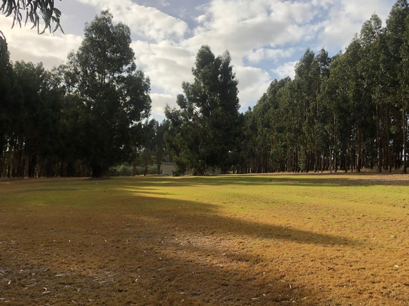 202, Munetta Road, Pages Flat, SA 5172
