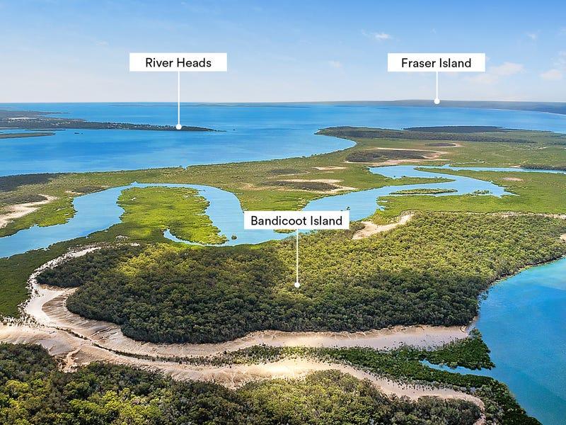 Bandicoot Island, Great Sandy Strait, Qld 4655
