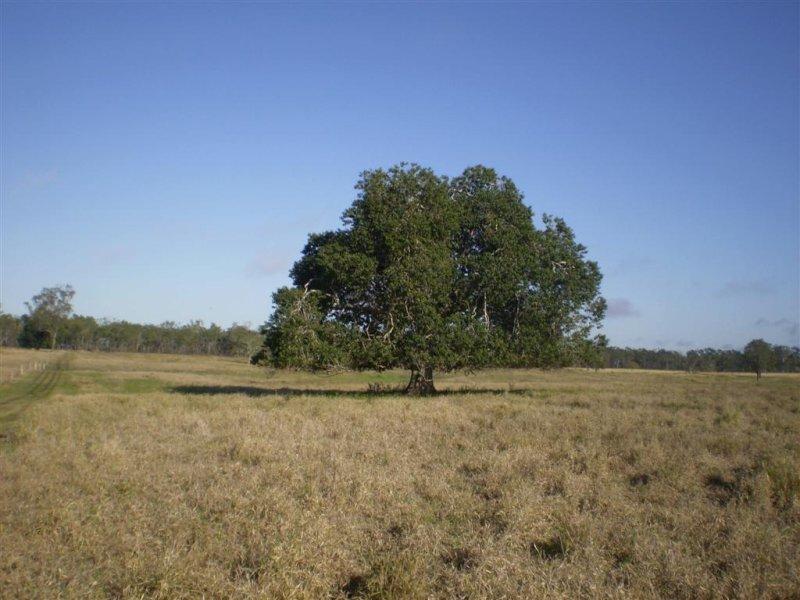 1688 South Yaamba Rd, South Yaamba, Qld 4702