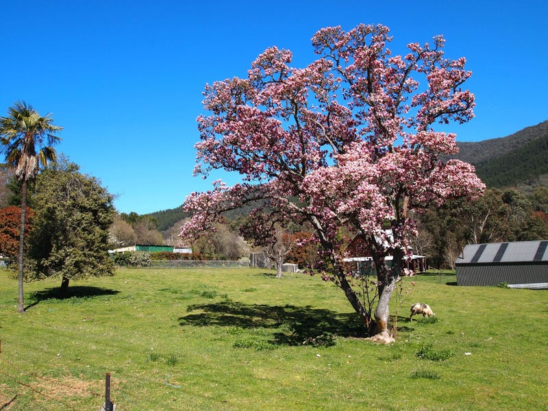 PS 142190 Morses Creek Road, Wandiligong, Vic 3744