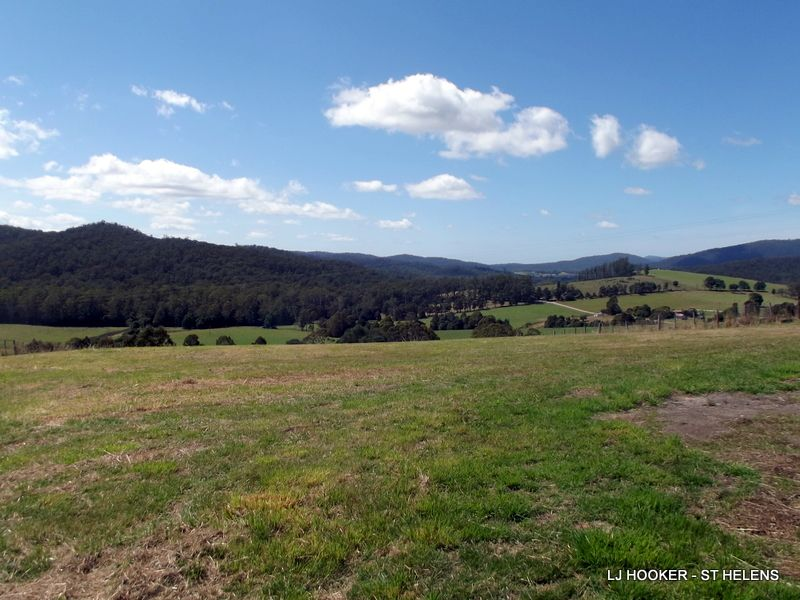 310 Lottah Road, Goulds Country, Tas 7216