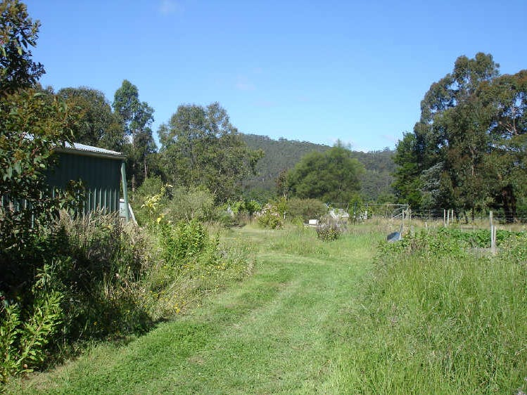 55 Old Beech Forest Road, Gellibrand