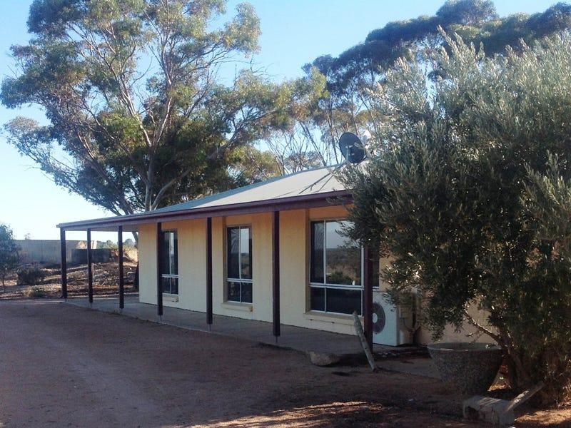 21132 Sturt Highway, Paringa, SA 5340